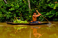 Peruvian Indian In Dugout Canoe Transporting Bananas